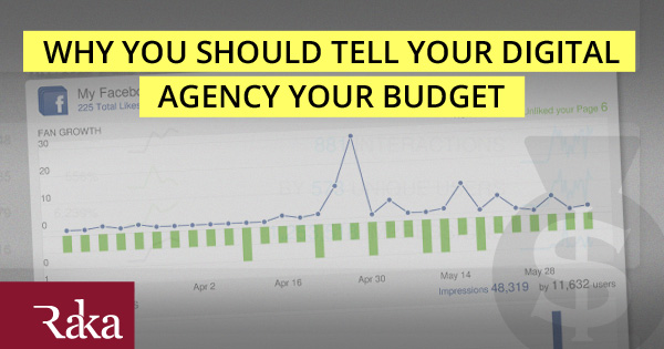 Digital Agency Budget Information
