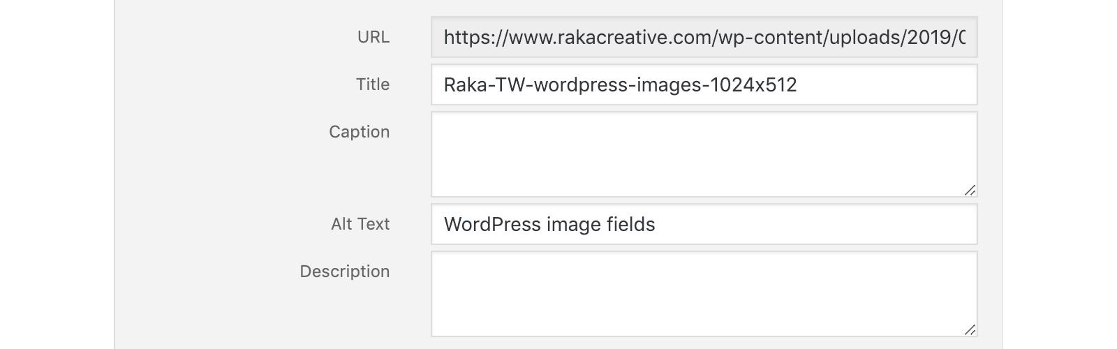 Optimizing WordPress Images: Title, Alt, Description, Huh?