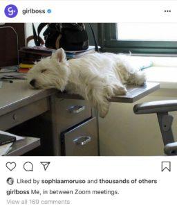 Using Humor on Social Media